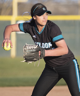 Sheldon High School Softball