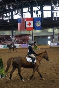 Kelly Maddox Training out of the Shiloh West Equestrian Center